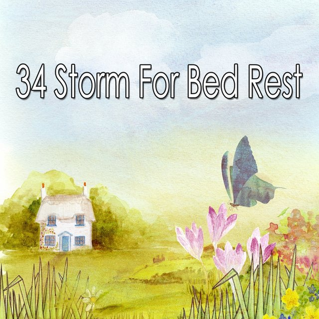 34 Storm for Bed Rest