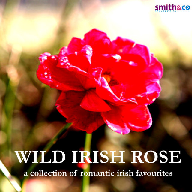 Wild Irish Rose - A Collection of Romantic Irish Favourites