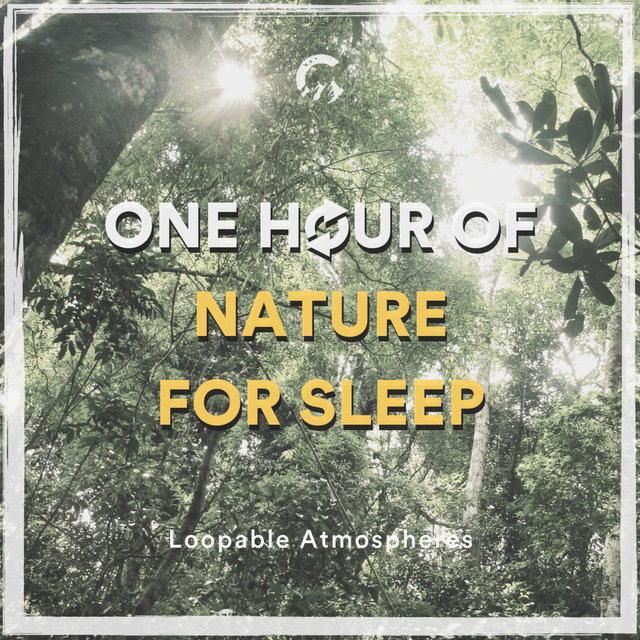 1 Hour Of Nature For Sleep