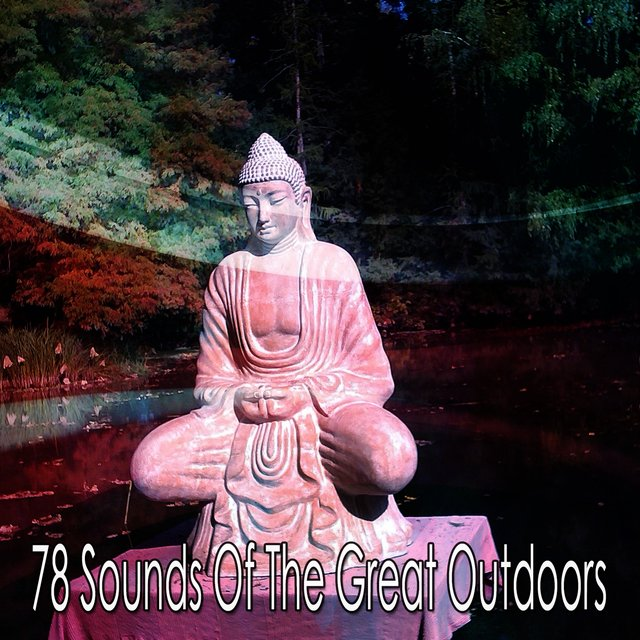 78 Sounds of the Great Outdoors