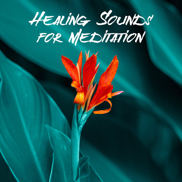 Healing Sounds for Meditation (Slow Deep Breathing & Calmness)