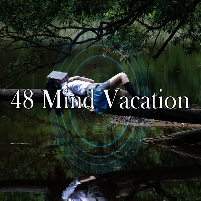 48 Mind Vacation