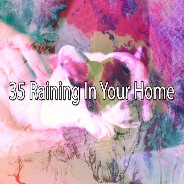 35 Raining in Your Home
