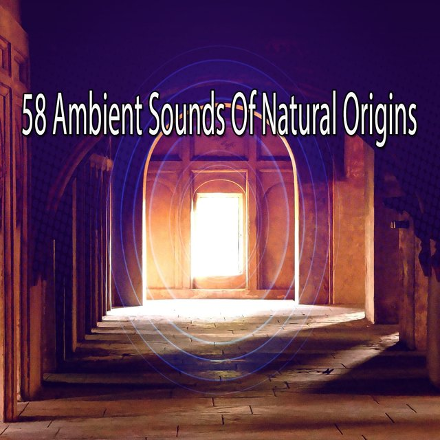 58 Ambient Sounds of Natural Origins