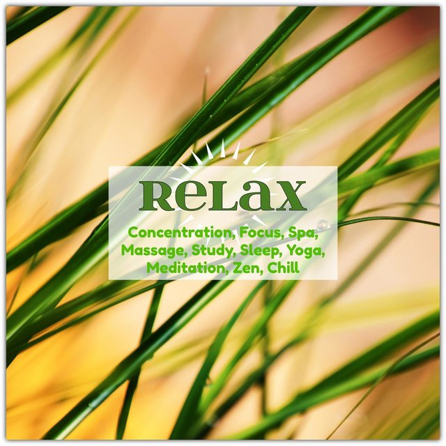 Relax: Concentration, Focus, Spa, Massage, Study, Sleep, Yoga, Meditation, Zen, Chill