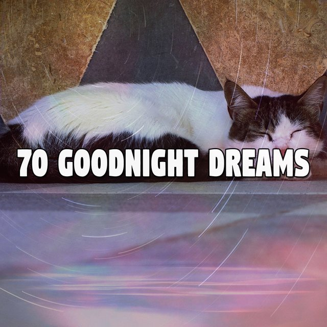 70 Goodnight Dreams