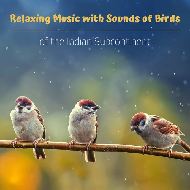 Relaxing Music with Sounds of Birds of the Indian Subcontinent