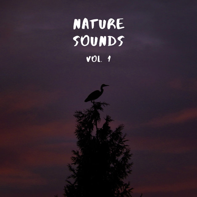 Nature Sounds Vol.1, Nature Music to Sleep