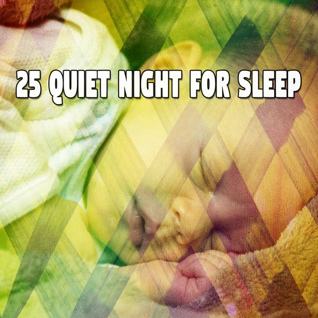 25 Quiet Night for Sle - EP