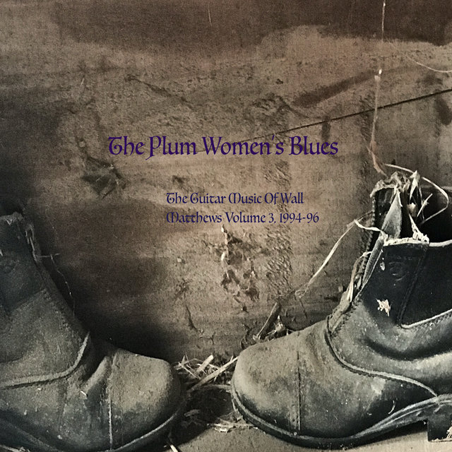 The Plum Women's Blues: The Guitar Music of Wall Matthews (1994-1996), Vol. 3