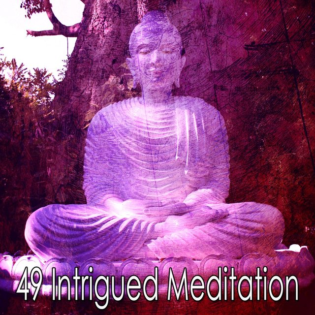 49 Intrigued Meditation