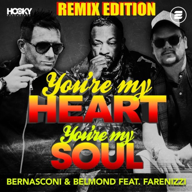 You're My Heart, You're My Soul (Remix Edition)