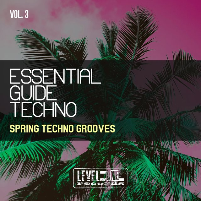 Essential Guide Techno, Vol. 3 (Spring Techno Grooves)