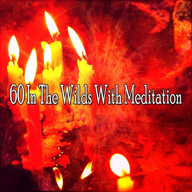 60 In the Wilds with Meditation
