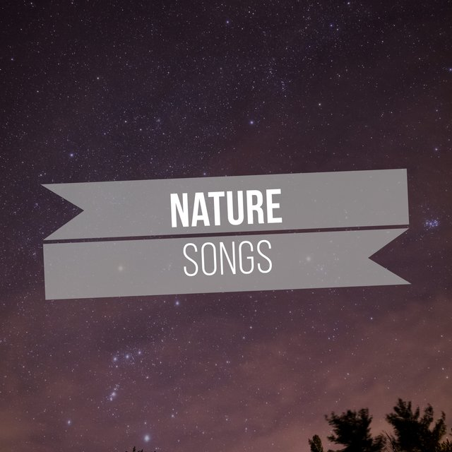 Peaceful Rustic Nature Songs