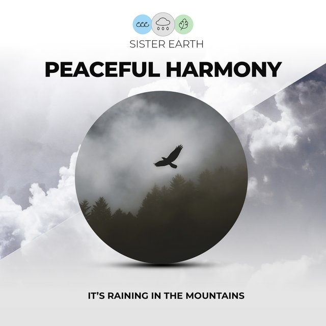 Peaceful Harmony: It's Raining in the Mountains