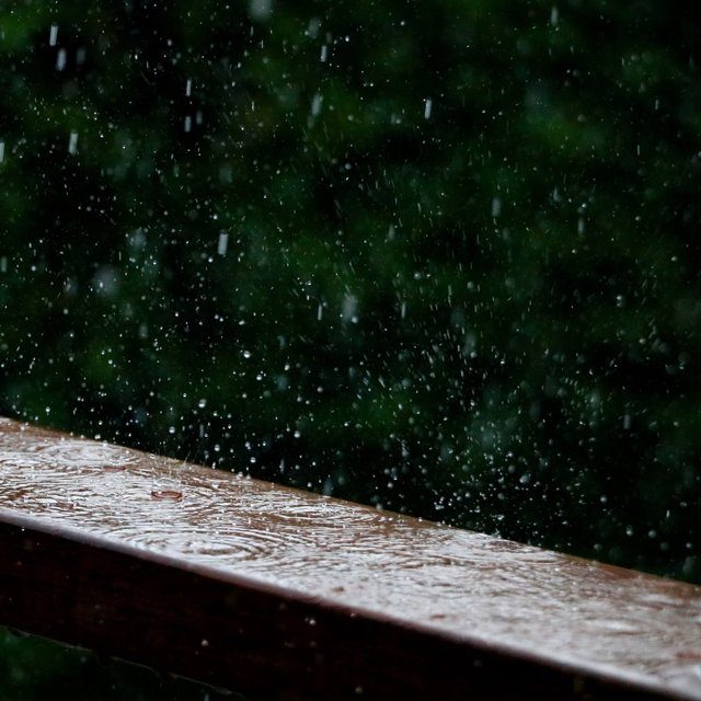 2020 Summer Ambient Rain Sounds for Deep Sleep