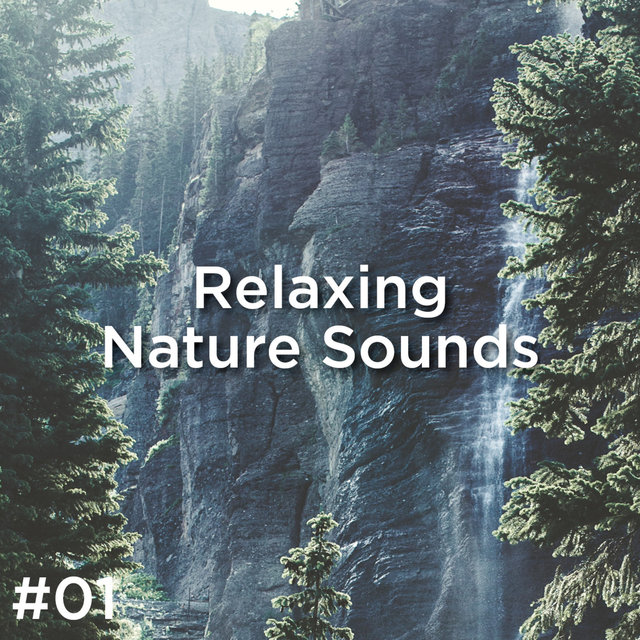 #01 Relaxing Nature Sounds