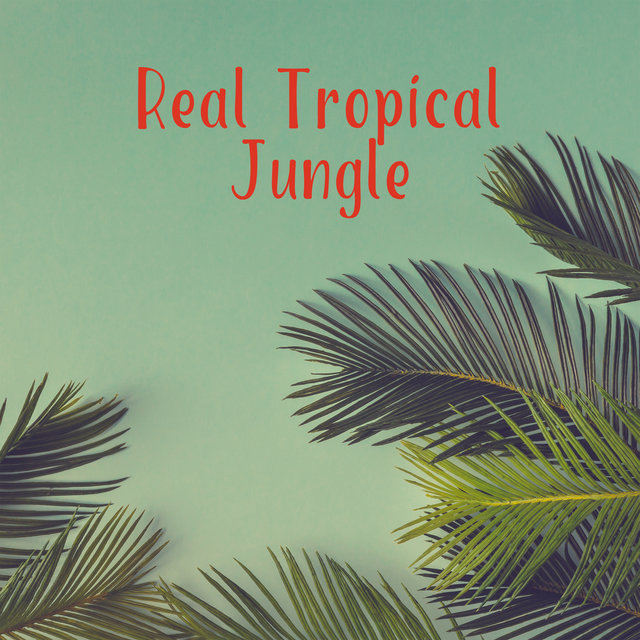 Real Tropical Jungle - Therapy Music with Nature Sounds, Deep Peace & Harmony, Relaxing Nature Music for Stress Relief