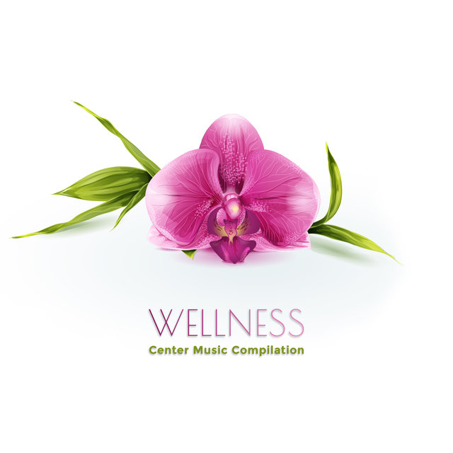 Wellness Center Music Compilation