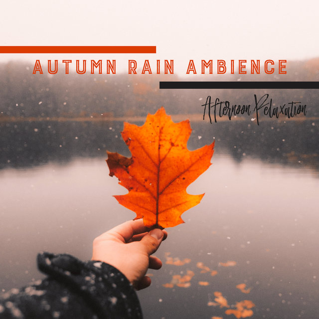 Autumn Rain Ambience: Afternoon Relaxation - Mindfulness Meditation, Sleep, Stress Relief, Yoga & Nature Sounds