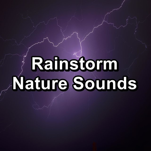 Rainstorm Nature Sounds