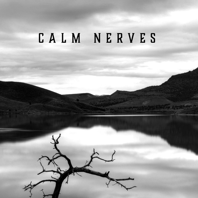 Calm Nerves – BGM Jazz for Physical and Mental Relaxation