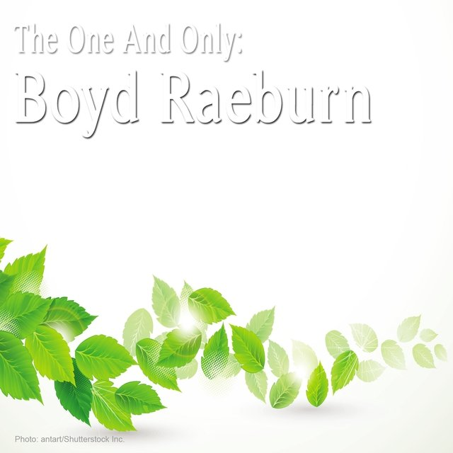 The One and Only: Boyd Raeburn