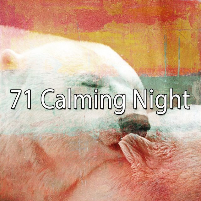 71 Calming Night
