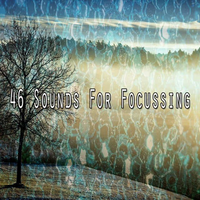 46 Sounds for Focussing