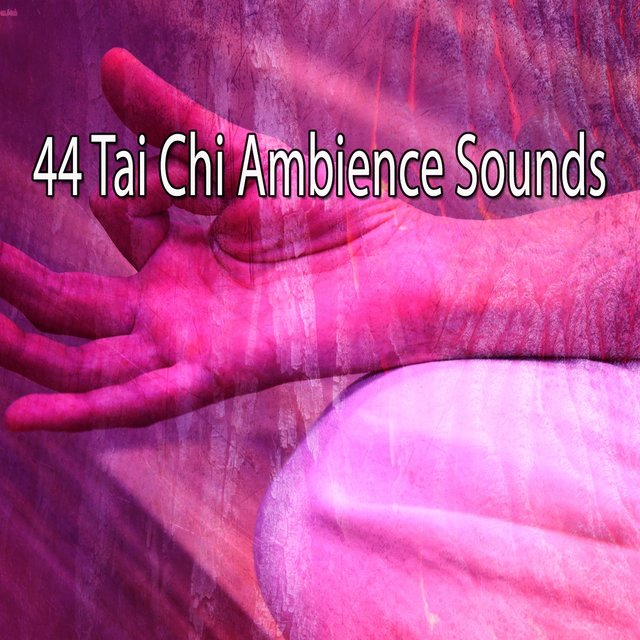 44 Tai Chi Ambience Sounds