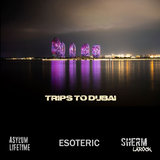 Trips to Dubai