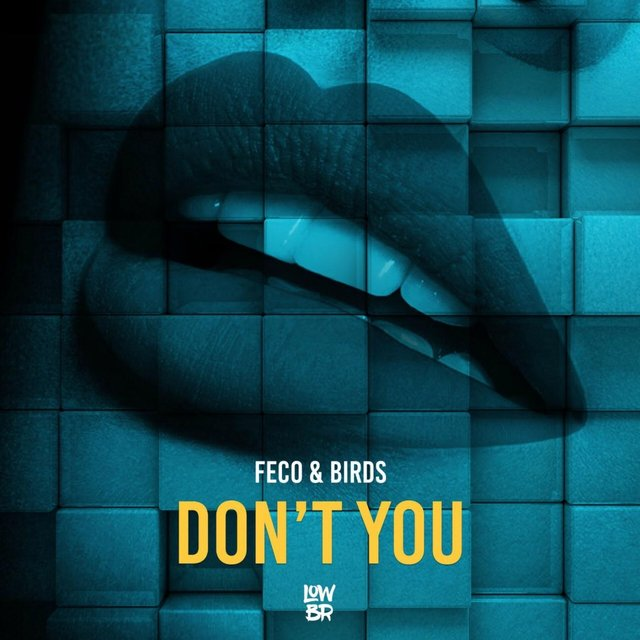 Don't You (feat. Feco)