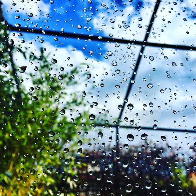 55 Meditative Rain Sounds