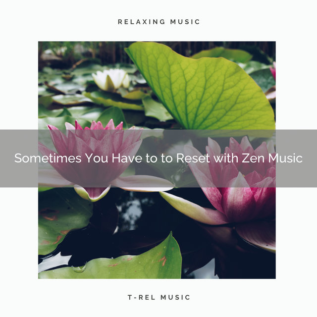 2020 Best: Sometimes You Have to to Reset with Zen Music