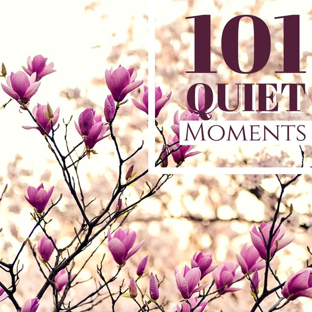 101 Quiet Moments - Songs for Miraculous Therapy, Finding Your Happiness with Love