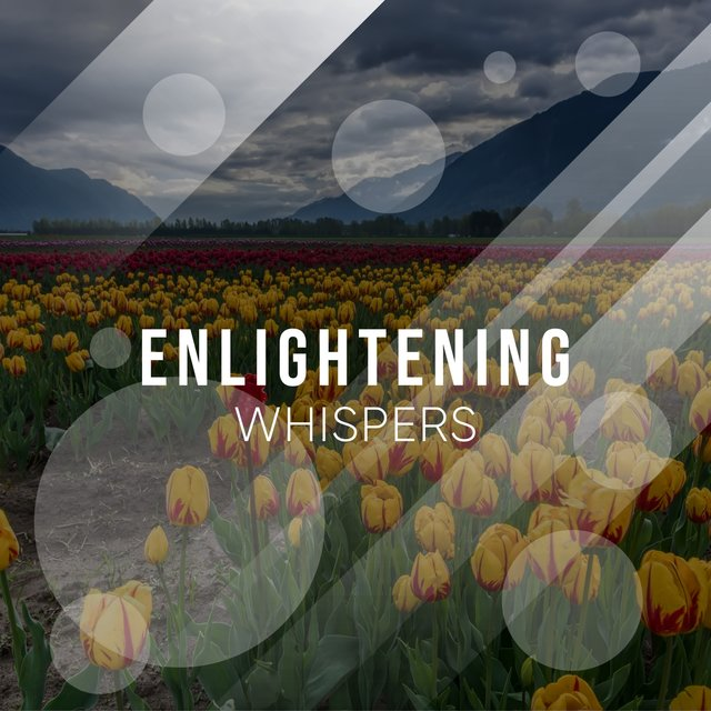 # 1 Album: Enlightening Whispers
