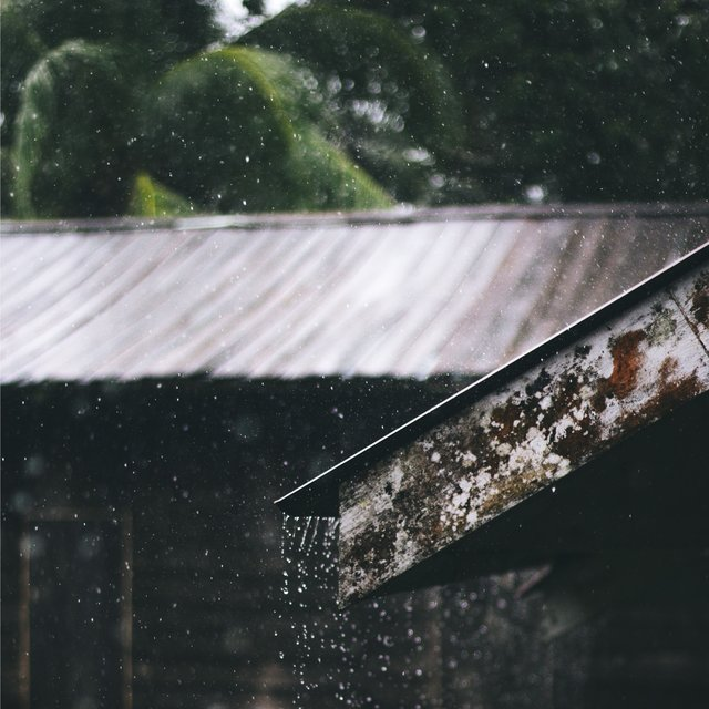 Wash Away Stress | Sounds of Ambient Rain Collection