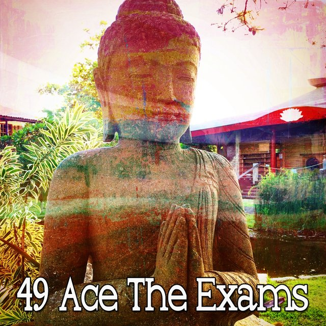 49 Ace the Exams