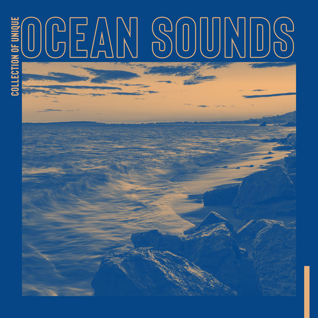 Collection of Unique Ocean Sounds