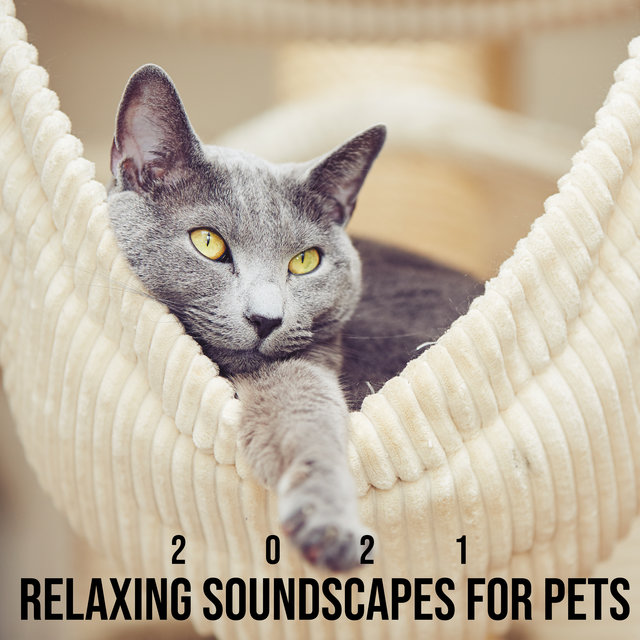 2021 Relaxing Soundscapes for Pets