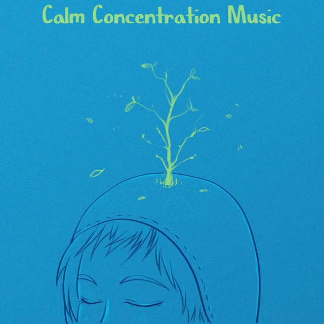 Calm Concentration Music