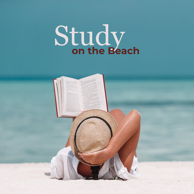Study on the Beach - Focus Music, Relaxing Waves for Meditation, Sleeping and Mindfulness