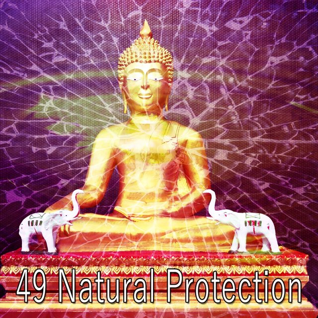 49 Natural Protection