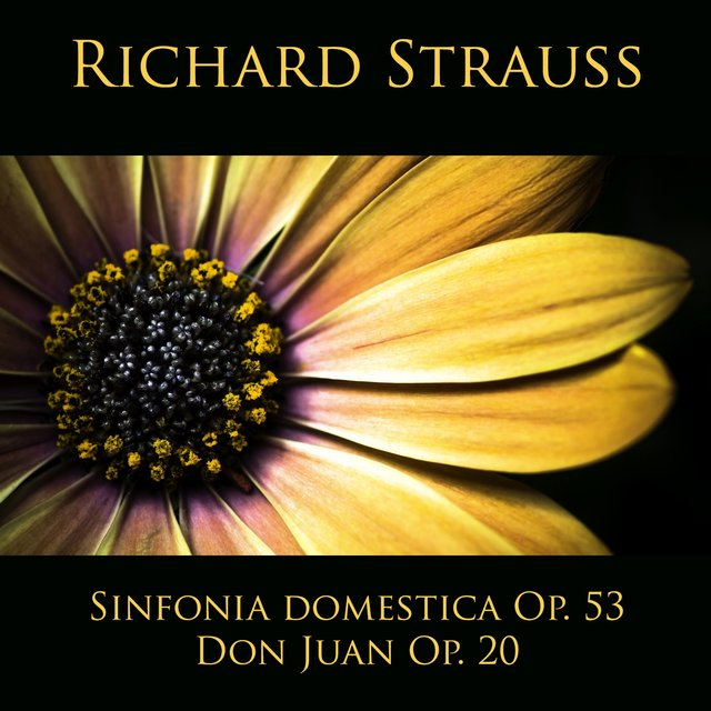 Richard Strauss: Sinfonia domestica Op. 53 - Don Juan Op. 20