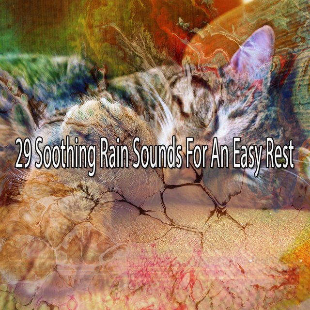 29 Soothing Rain Sounds for an Easy Rest