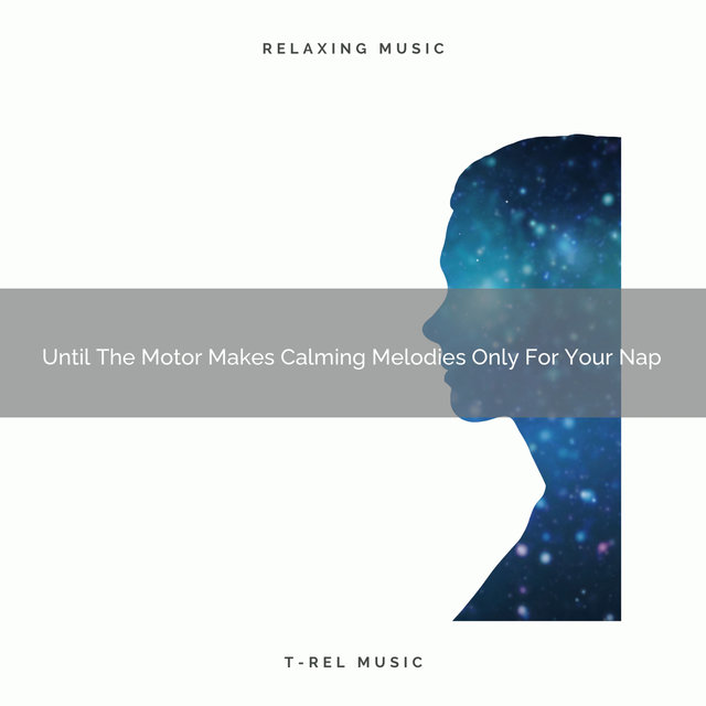 2020 Best: Until The Motor Makes Calming Melodies Only For Your Nap
