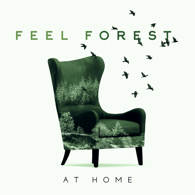 Feel Forest at Home - Relax Your Mind & Body with Nature New Age Music