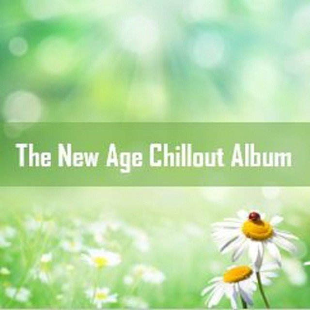The New Age Chillout Album