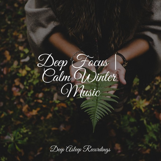 Deep Focus | Calm Winter Music
